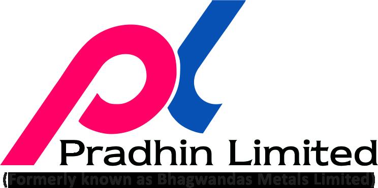 Pradhin Ltd. - Logo